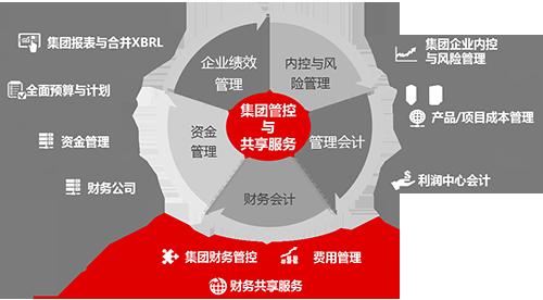 集团管控与共享服务