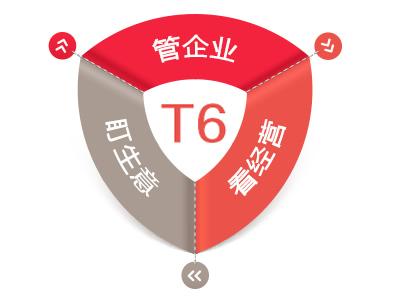 天博国际在线T6